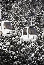 Luftseilbahnen fahren an schneebedeckten Bäumen vorbei