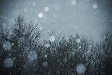 Schneegestöber, Blitzaufnahme am Abend