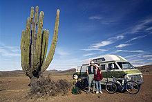 Kaktus, Ausflug, Baja California, Mexiko