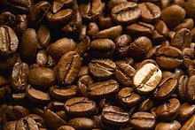 Kaffeebohnen mit einer goldenen Bohne, Nahaufnahme