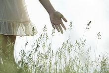 Young woman's Hand berühren hohem Gras