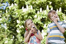 Kinder schlecken im Freien Eiscreme