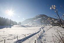 Verschneite Landschaft, Kirchberg, Tirol, Österreich