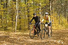 Mann und Frau, Biken in den Wäldern von Muskoka