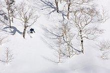 Telemark ,Furano ,Hokkaido ,Japan