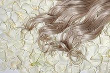 hoch, oben ,nahe ,liegend, liegen, liegt, liegendes, liegender, liegende, daliegen ,blond ,weiß ,Pflanze ,Haar ,Rose