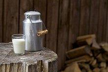Glas,Ländliches Motiv,ländliche Motive,Bauklötzchen,Milch