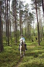 fahren ,Wald ,reiten - Pferd ,Mädchen