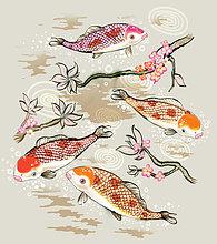 Koi,Teich,Fisch unterwasser