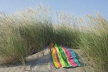 Italien, Adria, Strandtuch auf Sanddüne mit Gras