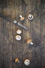 Frische braune Pilze (Agaricus) und ein Taschenmesser auf Holztisch, Studioaufnahme