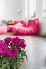 Wohnzimmer,Rose,Innenansicht