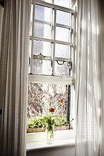 Fenster mit Mohnblumen in der Vase