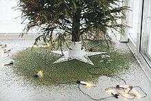 unterhalb,Beleuchtung,Licht,Weihnachten,Weihnachtsbaum,Tannenbaum