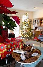 Weihnachtsstern,Euphorbia pulcherrima,Geschenk,nebeneinander,neben,Seite an Seite,Pflanze,Vielfalt,Zeit,Weihnachten,Süßigkeit,British Columbia,Chilliwack