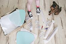 Frauenbeine umgeben von unmontierten Tischteilen mit ihrem Hund