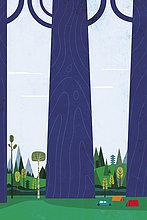 Campingzelte neben riesigen langen Bäumen