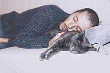 Russian Blue und der Besitzer schläft auf der Couch.