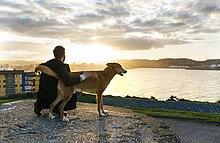 Spanien, Gijon, Mann und Hund in der Abenddämmerung
