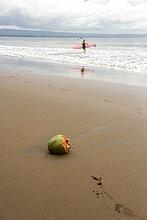 Indonesien, Java, Kokosnuss und Frau mit Surfbrett am Strand